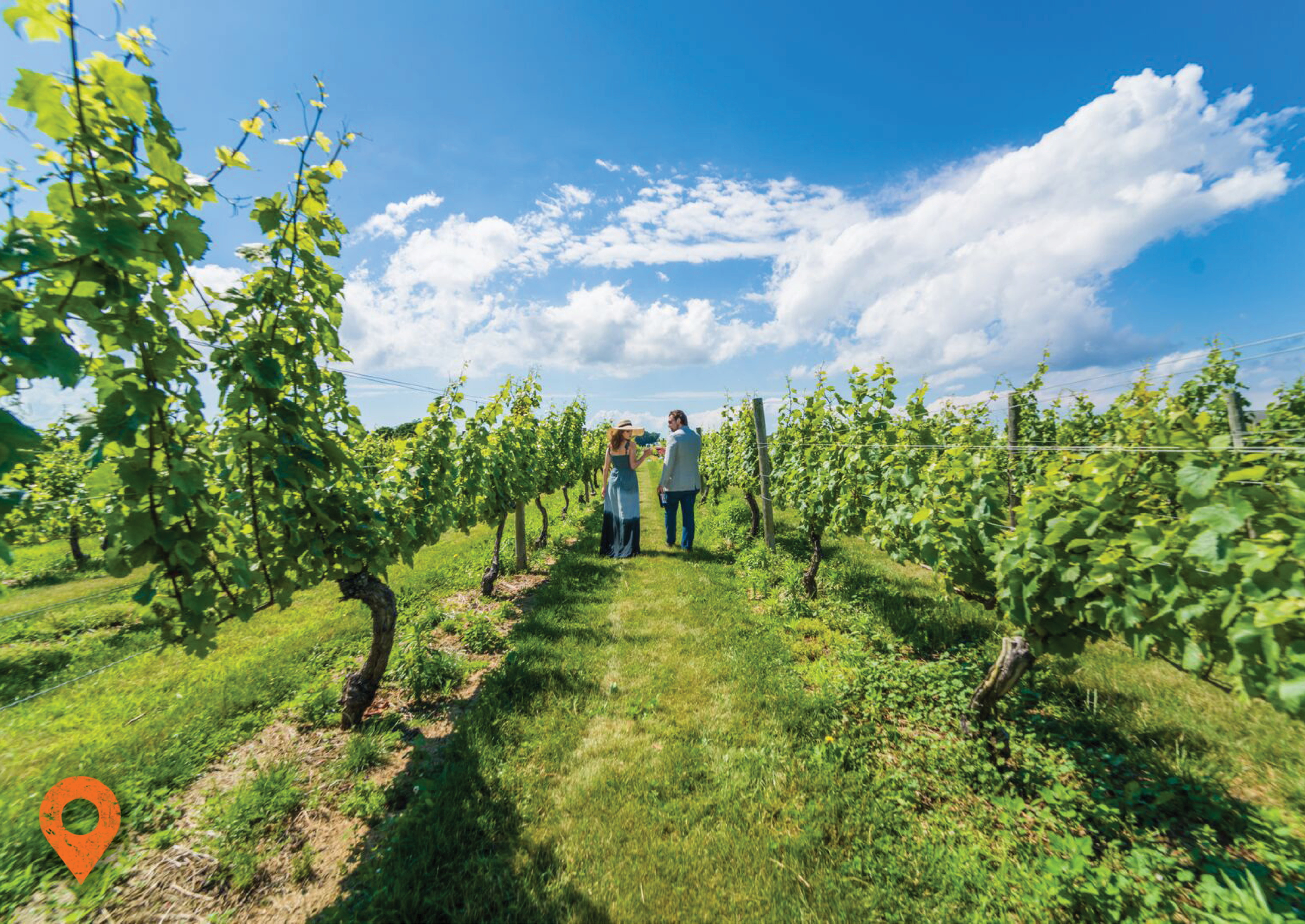Long Island Wineries, Breweries & Distilleries | Discover Long Island