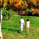 Cayuga Lake Wine Trail | Auburn & Aurora Area